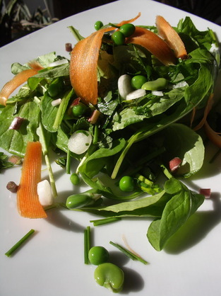 Medium baby arugula  ramps  fava  and fresh peas with lemon  vin 2